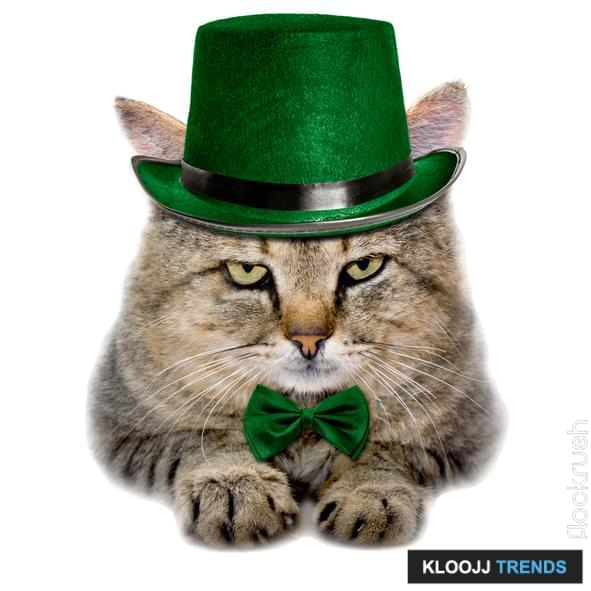 custom hats for cats