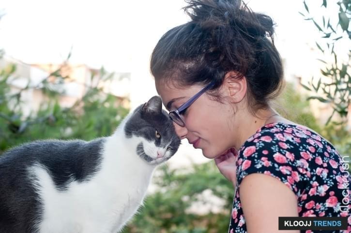 feline psychology