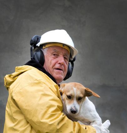 the animal rescue