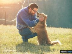elderly dog care